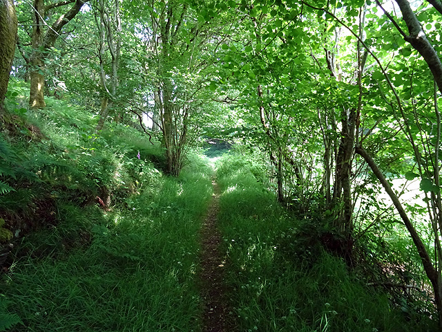 Coed y Garth Trail
