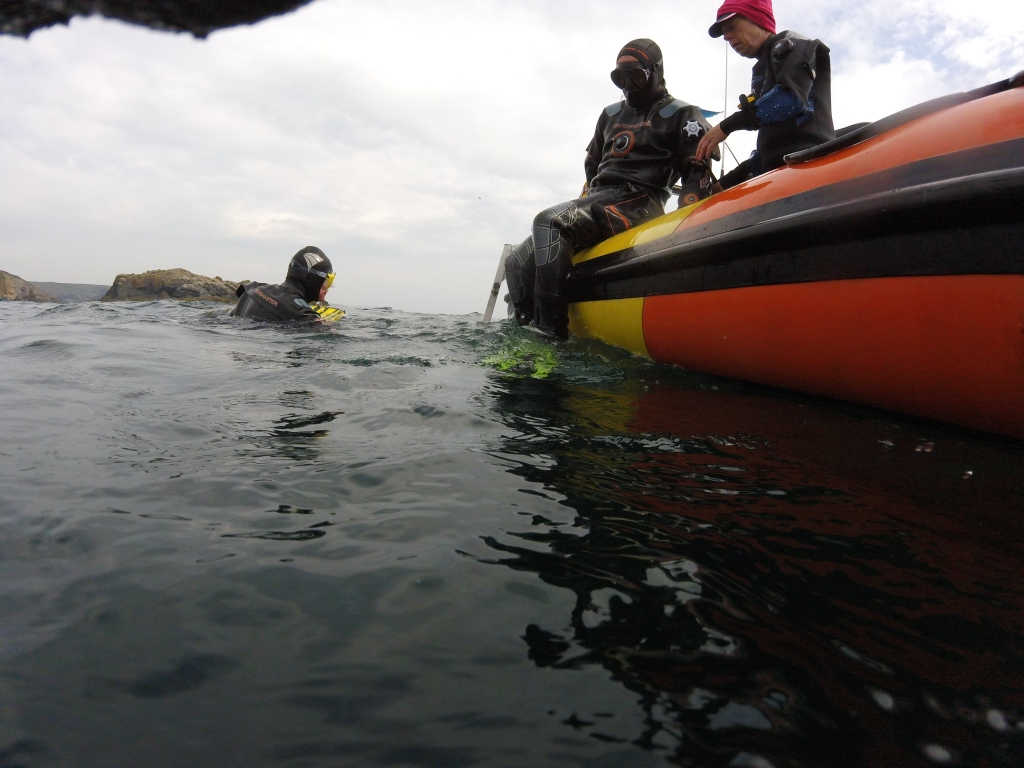 Diving off a Rib