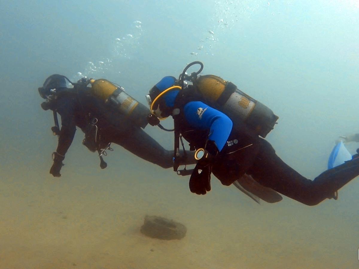 Divemaster Training Course