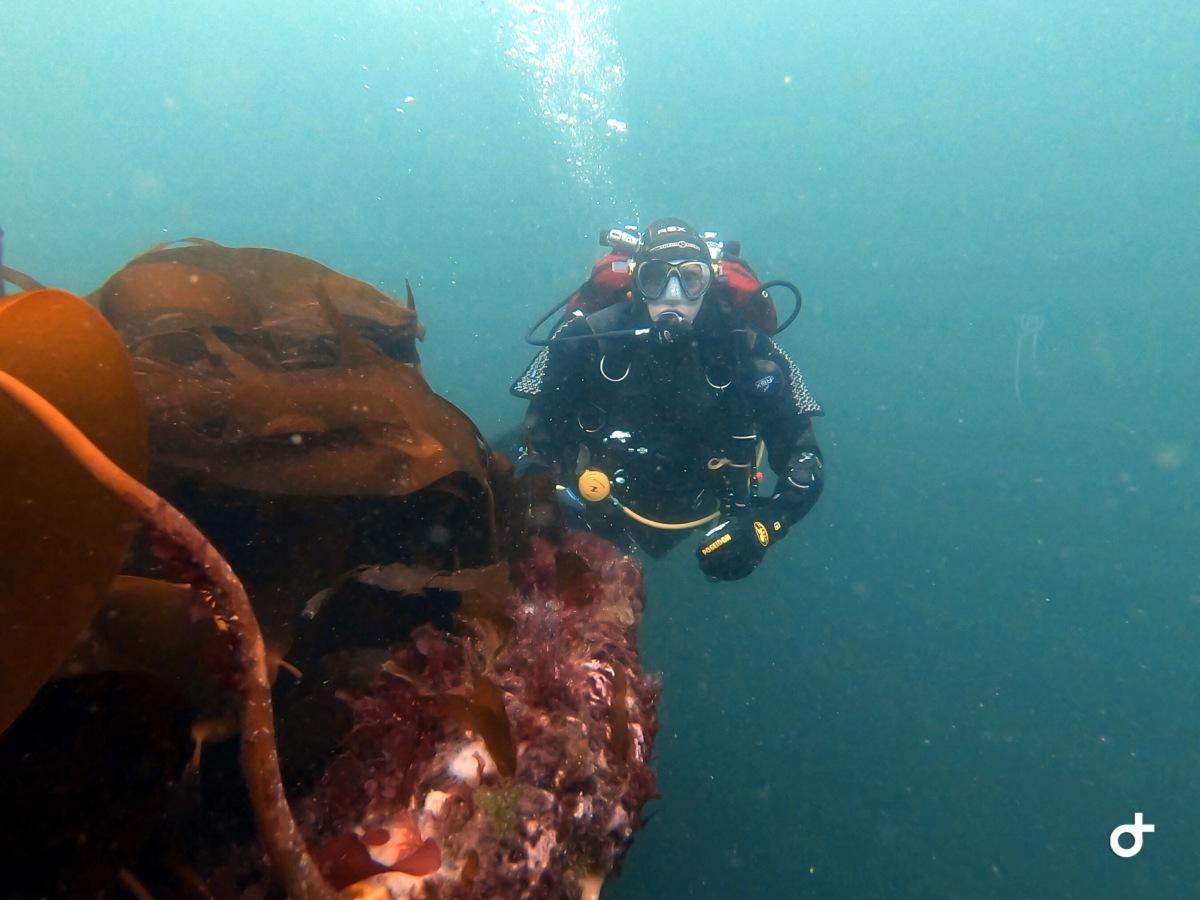 Deep Diver Training Course