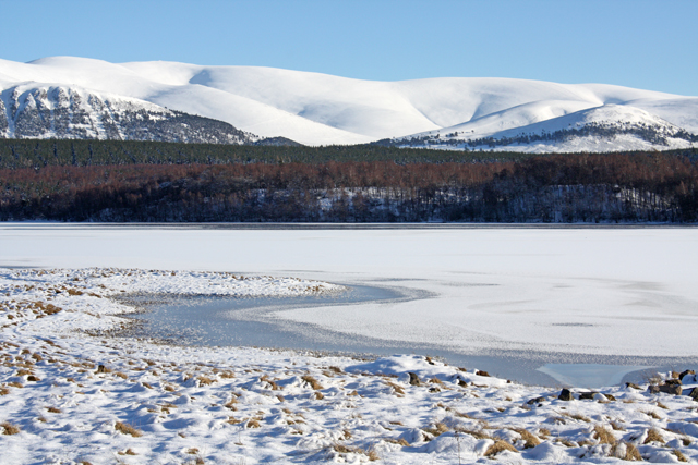 Ice Diving in Loch Insh, Scottish Highlands