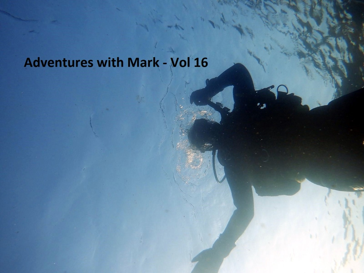 Adventures with Mark Vol 16